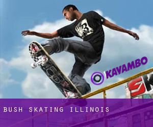 Bush Skating (Illinois)