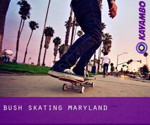 Bush Skating (Maryland)