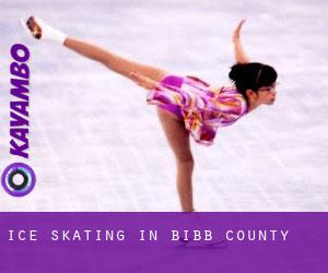 Ice Skating in Bibb County