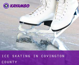 Ice Skating in Covington County