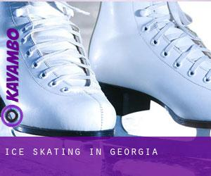 Ice Skating in Georgia