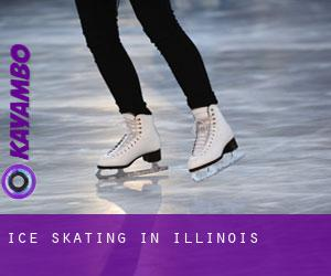 Ice Skating in Illinois