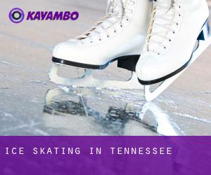 Ice Skating in Tennessee