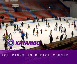 Ice Rinks in DuPage County