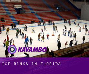 Ice Rinks in Florida