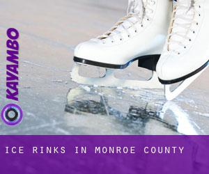 Ice Rinks in Monroe County