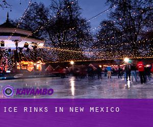 Ice Rinks in New Mexico