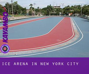 Ice Arena in New York City