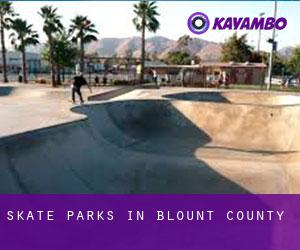 Skate Parks in Blount County