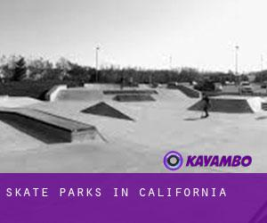 Skate Parks in California