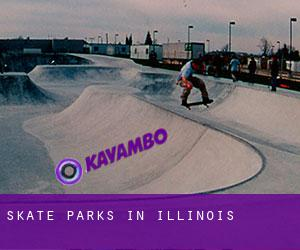 Skate Parks in Illinois
