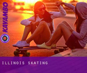 Illinois Skating