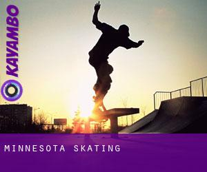 Minnesota skating